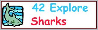 Lots of links to pages that have interesting information about sharks