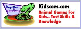 Animal games for kids that test your skills and knowledge