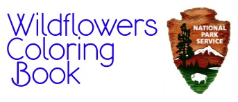 You can Celebrate Wildflowers in your own home by using the Plant Conservation Alliance's Coloring Books for the Northwest and Texas Hill Country.  Each Coloring Book also has an educational section discussing various topics dealing with plants.  The On-Line Gallery gives kids an opportunity to send in their coloring for display on the web.